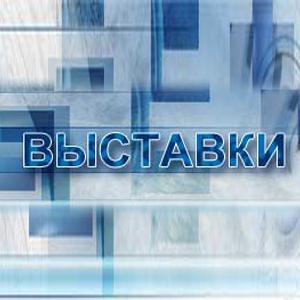 Выставки Верхнебаканского